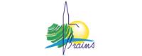 logo_brains